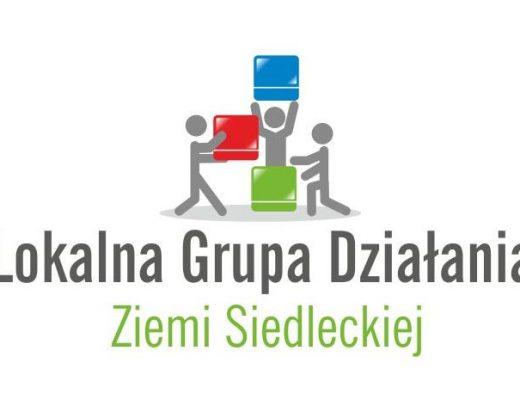lgd-zs-logo-2
