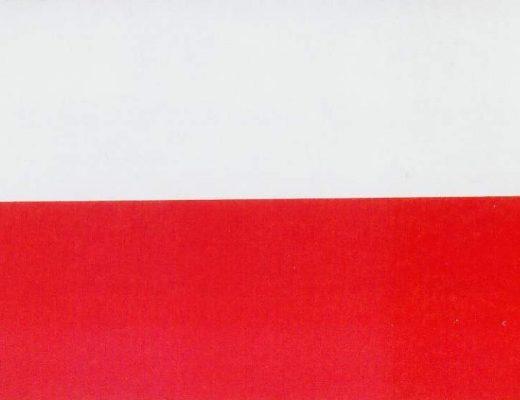 flaga_panstwowa_iii_rzeczypospolitej_1